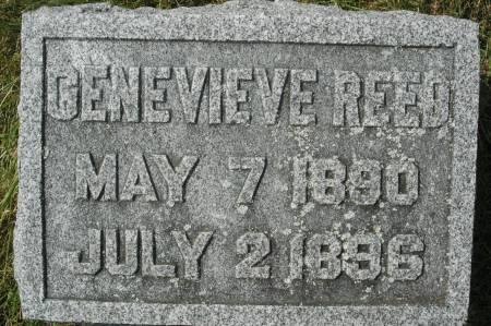 REED, GENEVIEVE - Clinton County, Iowa | GENEVIEVE REED