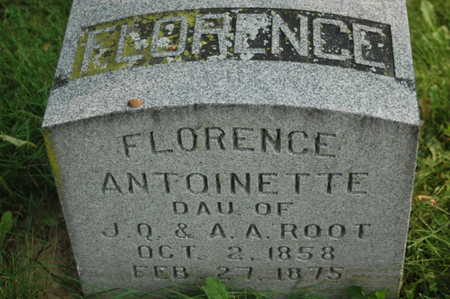 ROOT, FLORENCE ANTOINETTE - Clinton County, Iowa | FLORENCE ANTOINETTE ROOT