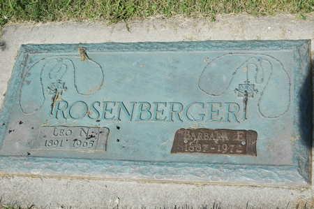 ROSENBERGER, LEO NICHOLAS - Clinton County, Iowa | LEO NICHOLAS ROSENBERGER