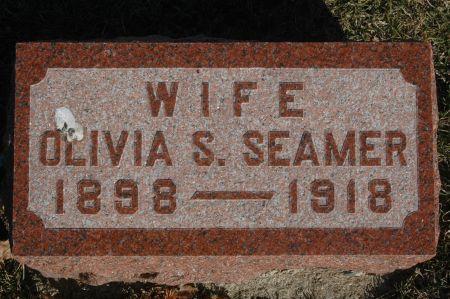 SEAMER, OLIVIA S. - Clinton County, Iowa   OLIVIA S. SEAMER