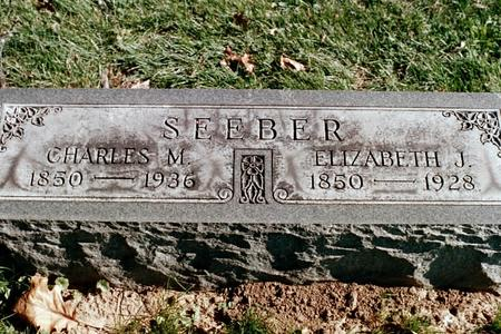 JEFFERIES SEEBER, ELIZABETH - Clinton County, Iowa | ELIZABETH JEFFERIES SEEBER