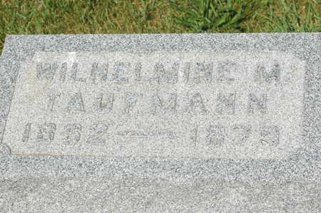 TAUFMANN, WILHELMINE M. - Clinton County, Iowa   WILHELMINE M. TAUFMANN