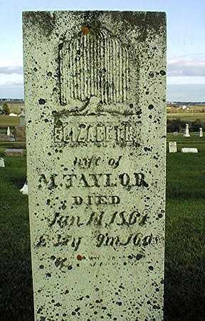 TAYLOR, ELIZABETH - Clinton County, Iowa | ELIZABETH TAYLOR