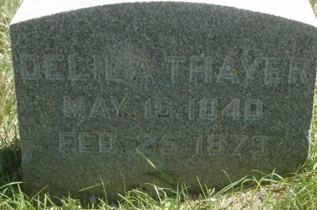 THAYER, DELILA - Clinton County, Iowa | DELILA THAYER