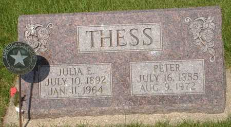THESS, PETER - Clinton County, Iowa | PETER THESS
