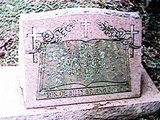 VAN DORN, BILLY G. JR - Clinton County, Iowa   BILLY G. JR VAN DORN