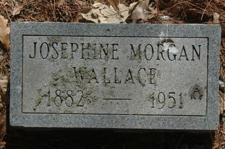 MORGAN WALLACE, JOSEPHINE - Clinton County, Iowa | JOSEPHINE MORGAN WALLACE