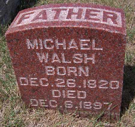 WALSH, MICHAEL - Clinton County, Iowa | MICHAEL WALSH