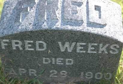 WEEKS, FRED - Clinton County, Iowa | FRED WEEKS
