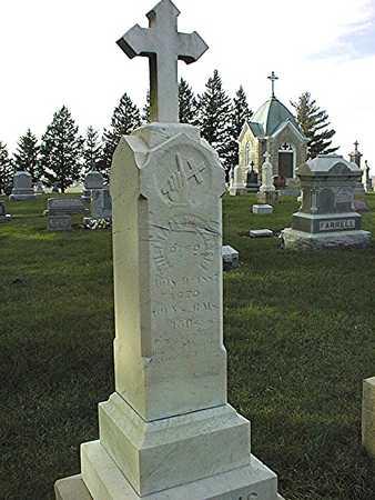 WILLIAMS, WILLIAM - Clinton County, Iowa | WILLIAM WILLIAMS