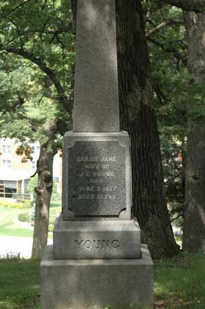 YOUNG, MONUMENT - Clinton County, Iowa   MONUMENT YOUNG