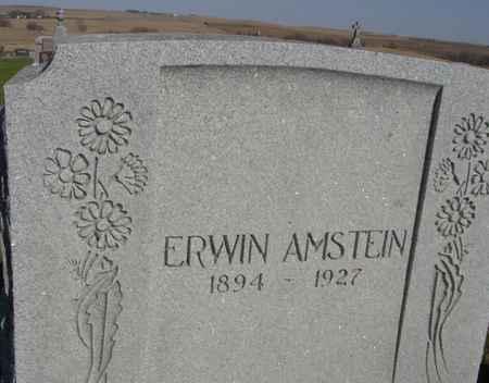 AMSTEIN, ERWIN - Crawford County, Iowa | ERWIN AMSTEIN