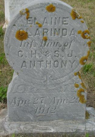ANTHONY, ELAINE CLARINDA - Crawford County, Iowa   ELAINE CLARINDA ANTHONY