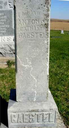 GAESTEL, CHILDREN - Crawford County, Iowa | CHILDREN GAESTEL