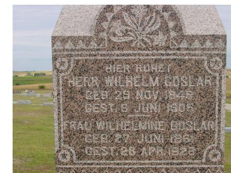 GOSLAR, WILHELM - Crawford County, Iowa | WILHELM GOSLAR