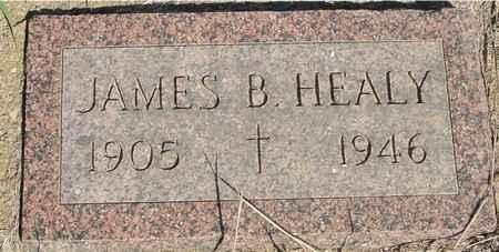 HEALY, JAMES B. - Crawford County, Iowa   JAMES B. HEALY