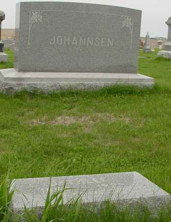 JOHANNSEN, DETLEF - Crawford County, Iowa   DETLEF JOHANNSEN