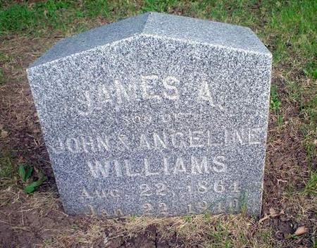 WILLIAMS, JAMES A. - Crawford County, Iowa | JAMES A. WILLIAMS