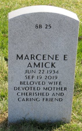 FORT AMICK, MARCENE E - Dallas County, Iowa | MARCENE E FORT AMICK