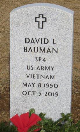 BAUMAN, DAVID L - Dallas County, Iowa | DAVID L BAUMAN