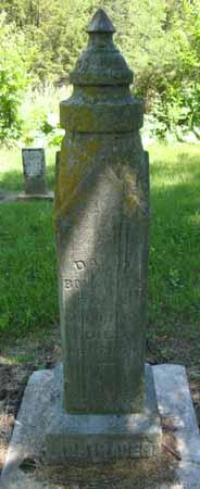 BONTRAGER, DAVID - Dallas County, Iowa   DAVID BONTRAGER