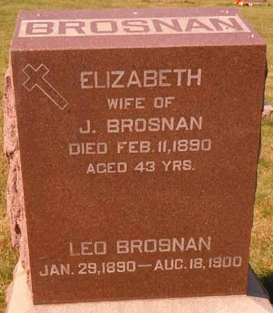 BROSNAN, LEO - Dallas County, Iowa | LEO BROSNAN
