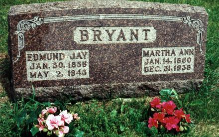 WARFORD BRYANT, MARTHA ANN - Dallas County, Iowa | MARTHA ANN WARFORD BRYANT
