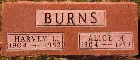 BURNS, ALICE M. - Dallas County, Iowa | ALICE M. BURNS
