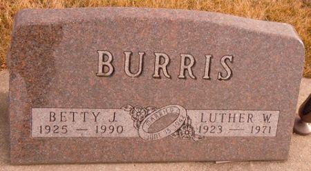 BURRIS, LUTHER W. - Dallas County, Iowa   LUTHER W. BURRIS