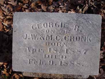 CRONK, GEORGIE R - Dallas County, Iowa   GEORGIE R CRONK