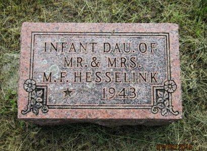 HESSELINK, INFANT DAU - Dallas County, Iowa   INFANT DAU HESSELINK