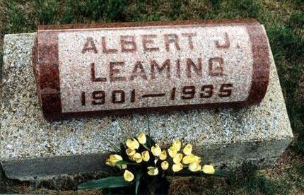 LEAMING, ALBERT - Dallas County, Iowa | ALBERT LEAMING
