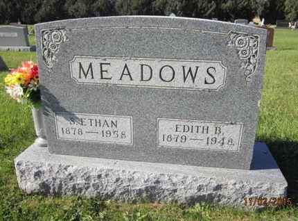 MEADOWS, S ETHAN - Dallas County, Iowa   S ETHAN MEADOWS