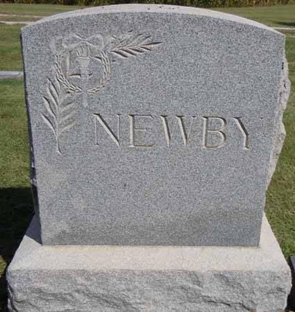 NEWBY, FAMILY STONE - Dallas County, Iowa   FAMILY STONE NEWBY