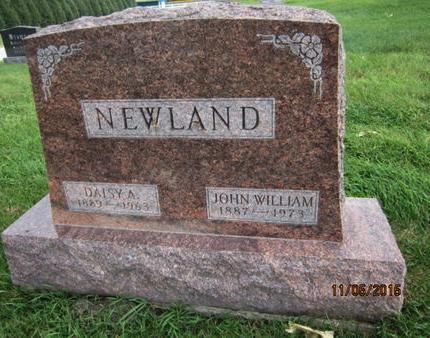NEWLAND, JOHN WILLIAM - Dallas County, Iowa   JOHN WILLIAM NEWLAND