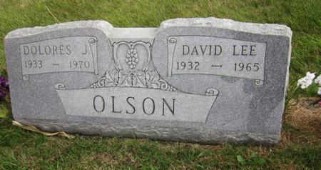 OLSON, DOLORES J - Dallas County, Iowa   DOLORES J OLSON