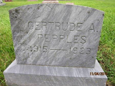PEPPLES, GERTRUDE A - Dallas County, Iowa | GERTRUDE A PEPPLES
