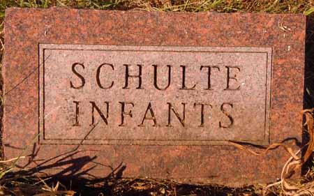 SCHULTE, INFANTS - Dallas County, Iowa   INFANTS SCHULTE