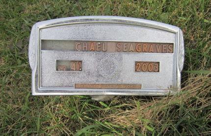 SEAGRAVES, MICHAEL - Dallas County, Iowa   MICHAEL SEAGRAVES