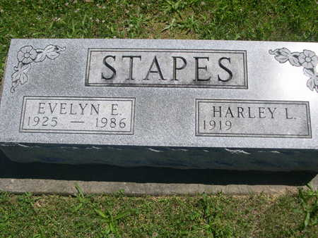 STAPES, EVELYN E. - Dallas County, Iowa   EVELYN E. STAPES
