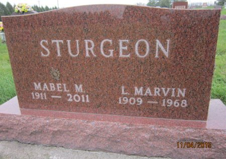 STURGEON, MABEL M - Dallas County, Iowa | MABEL M STURGEON