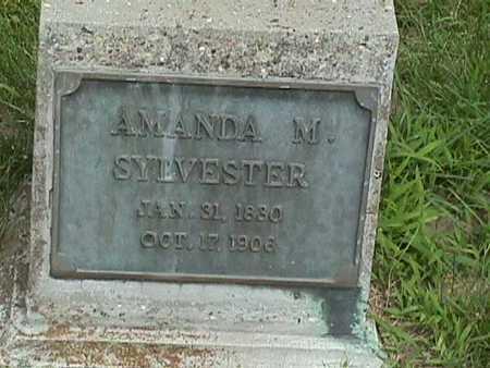 SYLVESTER, AMANDA - Dallas County, Iowa   AMANDA SYLVESTER