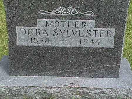 SYLVESTER, DORA - Dallas County, Iowa | DORA SYLVESTER