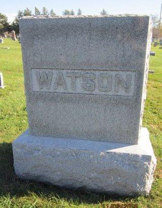 WATSON, FAMILY STONE - Dallas County, Iowa | FAMILY STONE WATSON