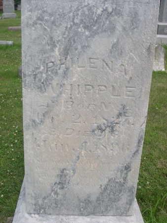 WHIPPLE, PHILINA - Dallas County, Iowa   PHILINA WHIPPLE