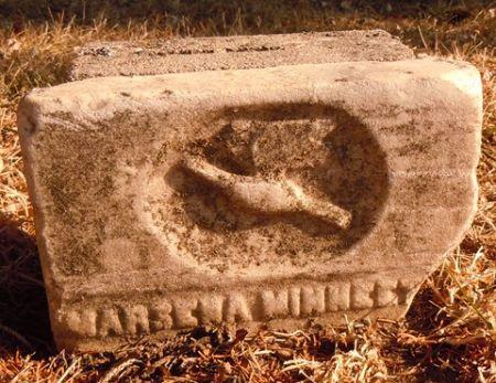 WHITE, MARSENA MINNIE - Dallas County, Iowa | MARSENA MINNIE WHITE