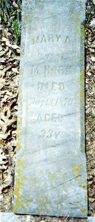 HORN, MARY A. - Davis County, Iowa | MARY A. HORN