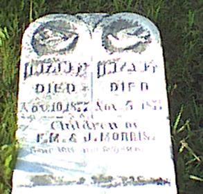 MORRIS, INFANT SONS - Davis County, Iowa   INFANT SONS MORRIS