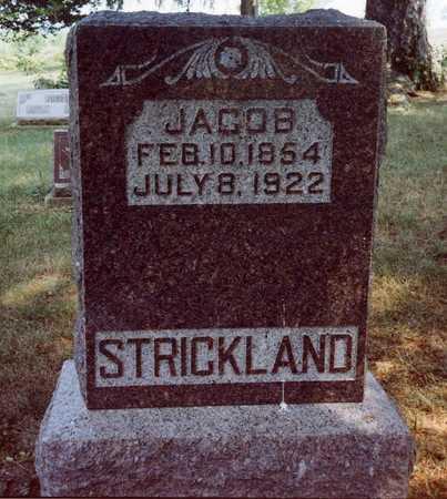 STRICKLAND, JACOB - Davis County, Iowa | JACOB STRICKLAND