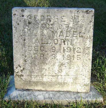 ALCORN, GEORGE W. - Delaware County, Iowa | GEORGE W. ALCORN
